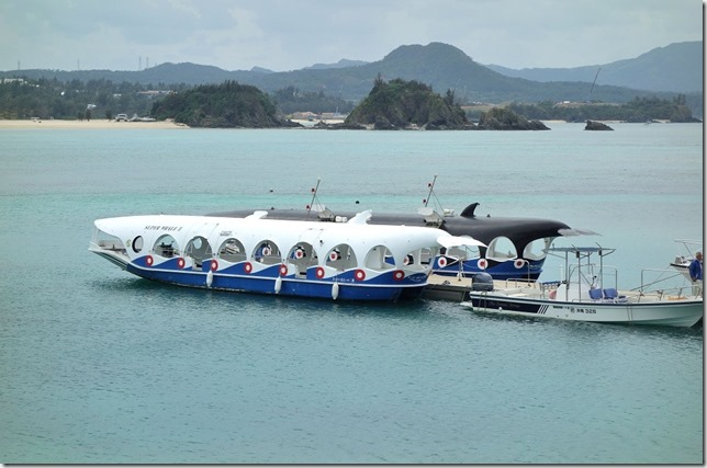 ブセナ海中公園_グラス底ボート